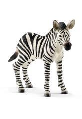 Cucciolo di Zebra Schleich 14811