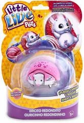 Little Live Pets Hérisson Rond S2 Famosa 700013972