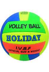 Ballon Volley-Ball Holiday