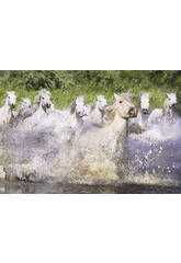 Puzzle 1000 chevaux blancs de la Camargue