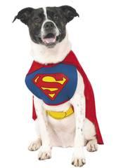 Disfraz Mascota Superman Talla XL Rubies 887892-XL