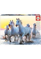 Puzzle 1000 Cavalli bianchi al tramonto Educa 17105