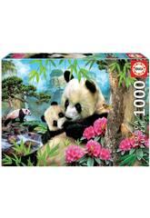 Puzzle 1.000 Orsi Panda Educa 17995