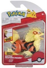 Pokemon Héros avec Mécanisme Bizak 63227224
