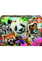 Puzzle 300 Black-Eyed Friends Selfie Educa 18610