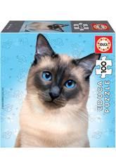 Puzzle Junior 100 Gato Siamese Educa 18806