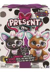 Presents Pets Mi Masctora Regalo Casey o Cocoa Bizak 6192 6531