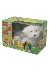 Cheisy Le Chien Laser