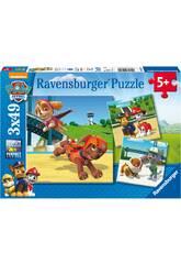 Puzle Paw Patrol con Ryder 3x49 piezas Ravensburger 9239